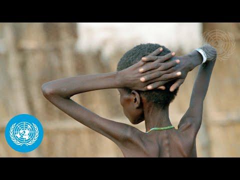 Conflict \u0026 Food Security - UN Security Council Open Debate