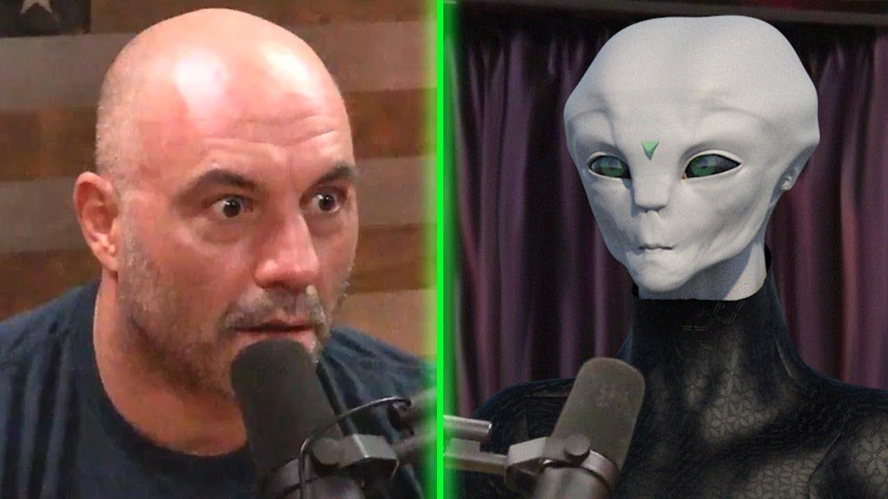 Joe Rogan Reacts To DMT Alien — ARK Crystals