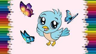 bird cartoon draw drawing easy step