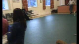 Bridgend Canine Assoc. Good Citizens' Tests July 2009 (part 1)