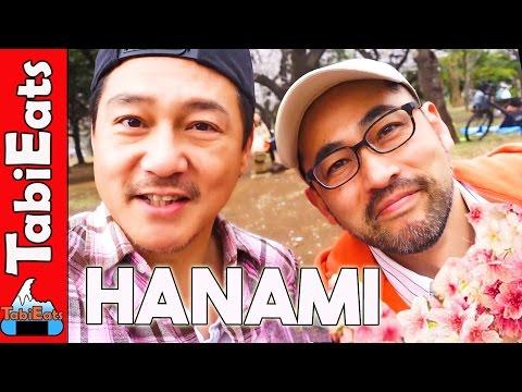 Hanami Cherry Blossom Picnic in Tokyo's Yoyogi Park