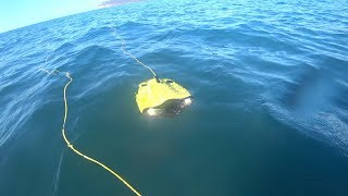 gladius-mini-rov-sea-trials