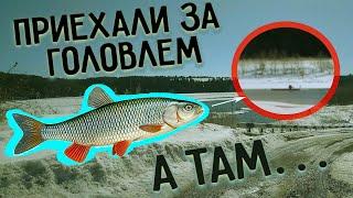 Зимняя рыбалка 2021 Приехали за голавлем и обнаружили это