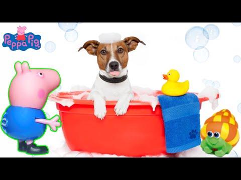 PIG GEORGE E PEPPA PIG O CACHORRINHO ABANDONADO E O BANHO DE ESPUMA - DOG ABANDONED AND BUBBLE BATH
