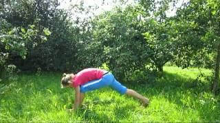 Йога для начинающих видео.avi(Базовые асаны, ритм дыхания,гармоничное развитие мышц спины пресса в практике йоги для начинающих дарят..., 2012-08-12T13:03:00.000Z)
