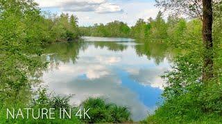 4k video (ultra hd video) beautiful nature