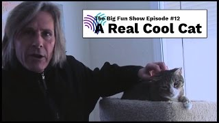 BFS 12 - The Real Cool Cat