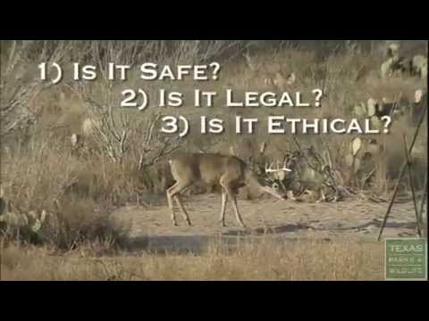 How To Take Safe, Legal And Ethical Shots