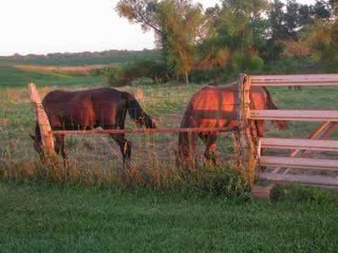 Wild Horses  Mazzy Star