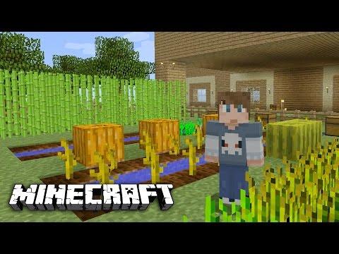 MINECRAFT - The Garden & The Farm [7]