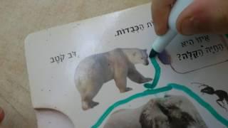 Урок иврита с Броней, Легкий и тяжелый