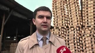 видео: В Україні стартувала  кампанія легалізації ринку європіддонів