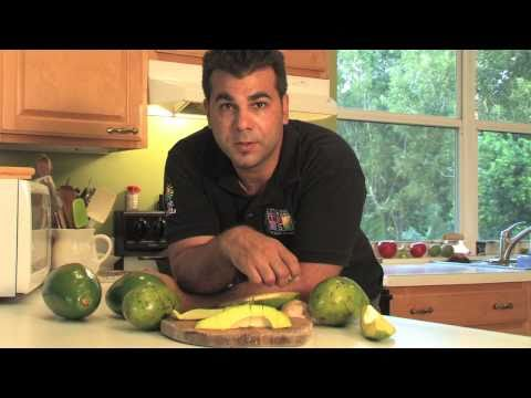 Avocado - Tropical Fruit Growers of South Florida