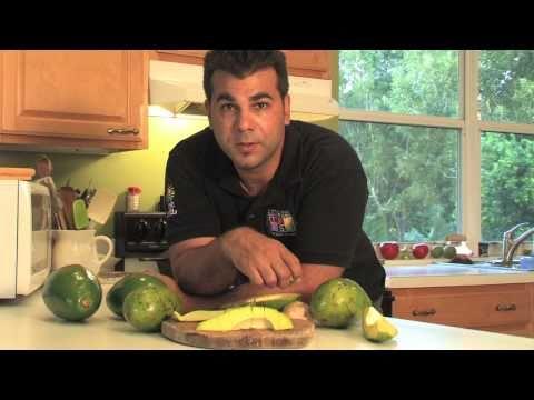Avocado - Tropical Fruit Growers of South Florida
