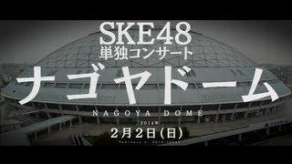 2013年8月17日、AKB48 2013年真夏のドームツアー~まだまだやらなきゃいけないことがある にて発表させて頂きました通り、SKE48単独ツアーを開催させて頂くことが ...