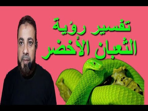 تفسير حلم رؤية الثعبان الأخضر للمتزوج والمتزوجة والحامل والعزباء اسماعيل الجعبيري Youtube