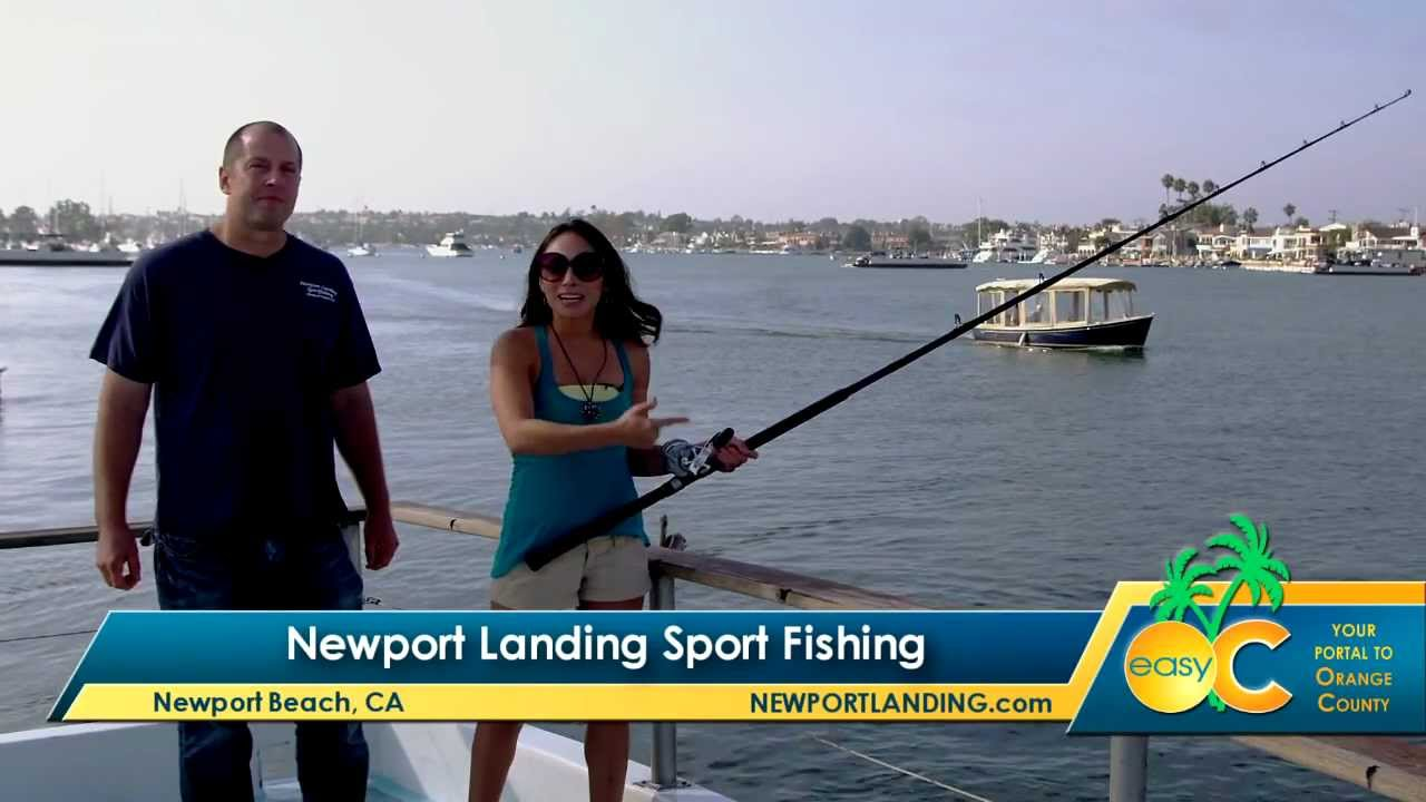 things to do in los angeles newport landing sport