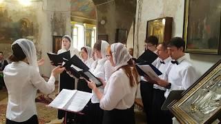 Петь в церковных хорах. Как выучить гласы? Поет хор Модерато (любители)