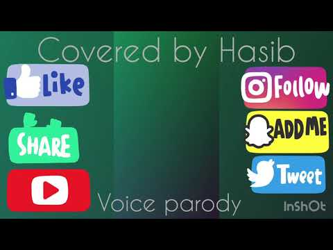 """Ei bristi veja raat e"" covered 