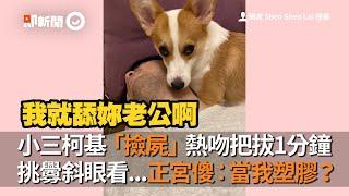 柯基犬熱吻狗爸1分鐘!挑釁斜眼看正宮:我就舔你老公啊|寵物|舌吻|不被愛的才是小三