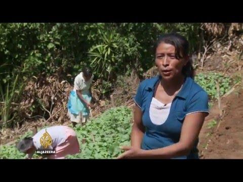 El Salvador's farmers suffer worst El Nino in years