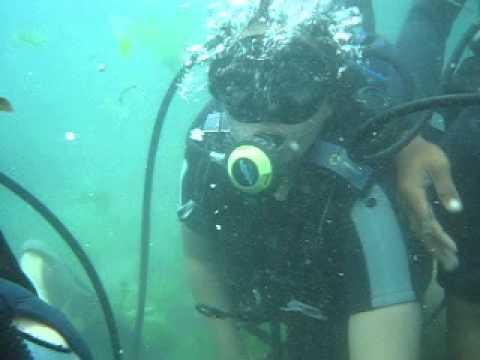 Diving Gatnas Jisportal 2