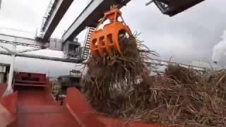 石垣島製糖操業開始