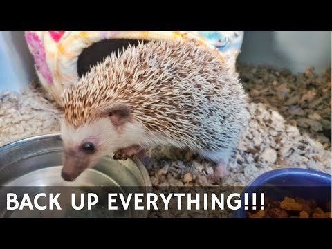 AA16 Deep Thoughts: Back Up Everything!!!