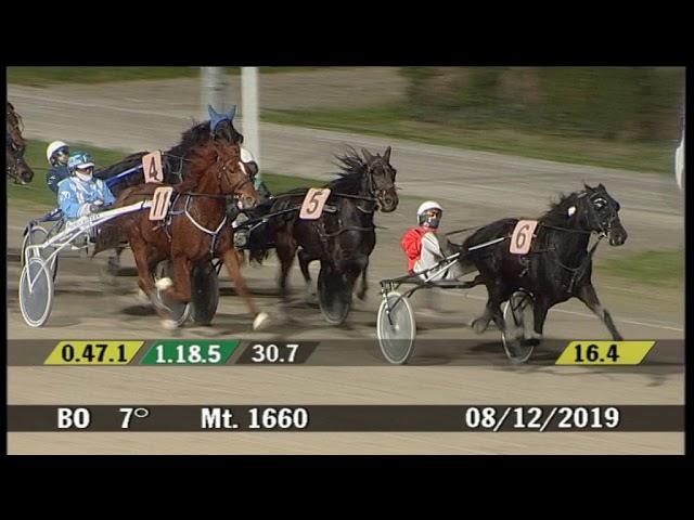 2019 12 08 | Corsa 7 | Metri 1660 | Premio Sterminadour Lav