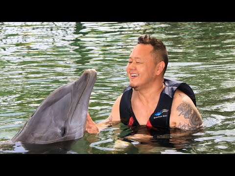 Chef Jet Tila Visits Dolphin Quest & Approves of Dolphins' Restaurant-Quality Fish!
