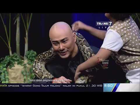 GADIS CILIK Pencinta Hewan Reptil - Hitam Putih 31 Oktober 2017