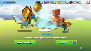 Let's go 50% Babify your Dragons for just 1 gem! - Dragon Mania Legends   part 1167 HD