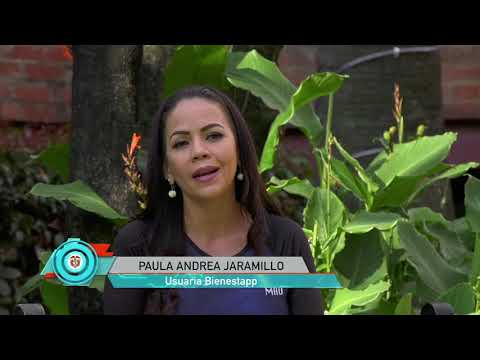 Bienestaap, emprendimiento colombiano, de talla internacional I N7 C48