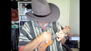 They All Went To Mexico Willie Nelson pocket ukulele cover