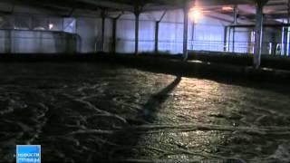 Водоканал перерасчитает коммунальные платежи за грязную воду(Горожанам вернут деньги за холодную воду. В настоящее время Водоканал разрабатывает порядок, в котором..., 2014-05-12T06:13:46.000Z)