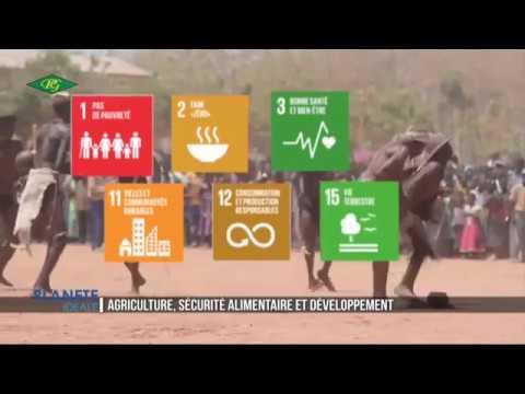 Agriculture, securite alimentaire et developpement