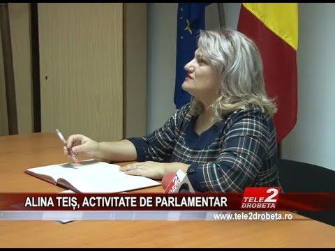ALINA TEIȘ, ACTIVITATE DE PARLAMENTAR