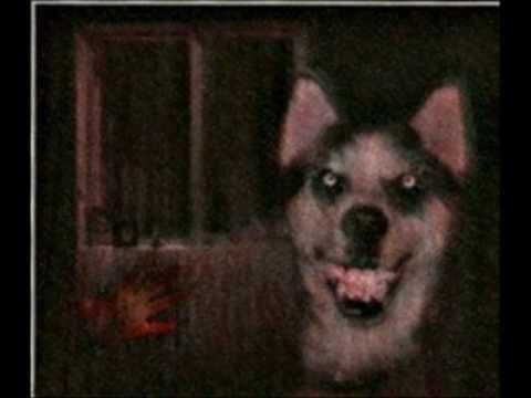 Creepypasta +  EXPLICACION Y RECREACION Smile.dog-smile.jpg