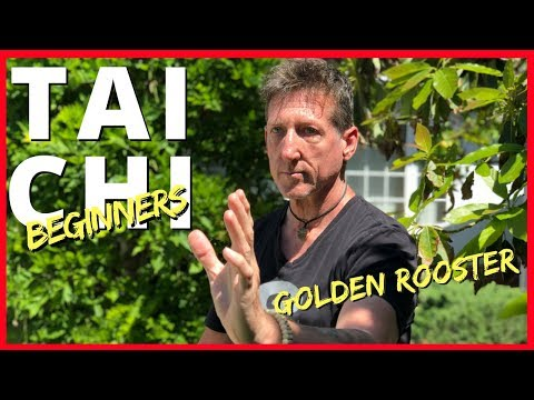 Tai Chi for Beginners | Secrets of the Golden Rooster