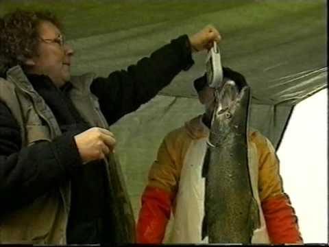 Жизненный цикл лосося