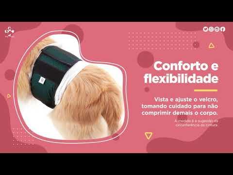 Protetor para Fraldas de Cães Machos - Pet Med