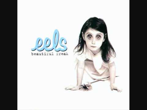 Eels - Rags To Rags