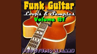 Funk Guitar Sample #48