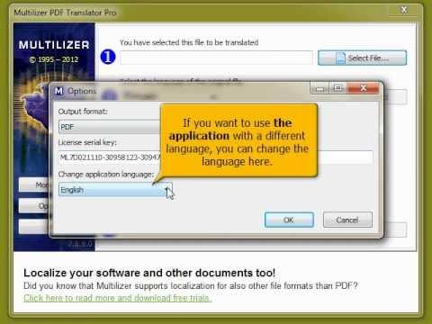 multilizer pdf translator serial