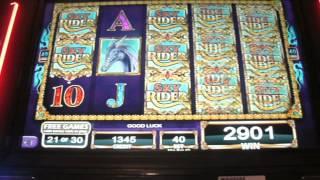Sky Rider Bonus Big Win 331 x !
