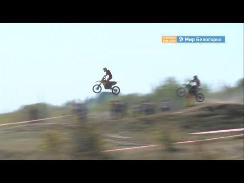 Мотокросс и конкур: соревнования в Валуйках