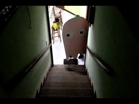 Pacman Live Action
