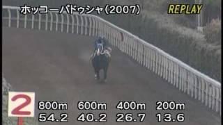 [調教] 090114 ホッコーパドゥシャ 「日経新春杯」前追い切り