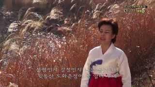 황선남 - 정선아라리