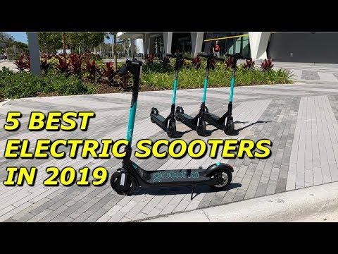 5 Best Electric Scooters in 2019